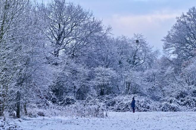 24h qua ảnh: Cô gái nếm hoa tuyết giữa trời lạnh giá - Ảnh 7.