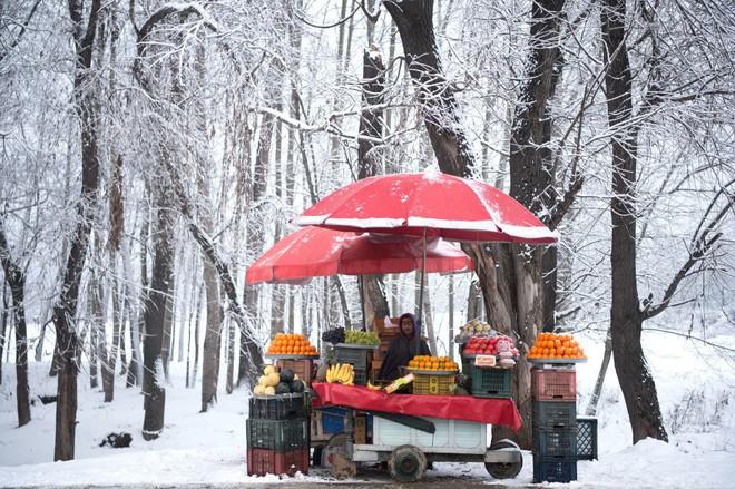 7 ngày qua ảnh: Công nhân chờ đổ xăng miễn phí trên đường trở về quê ăn tết - Ảnh 4.