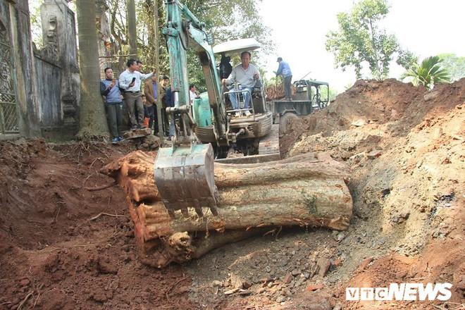 Dân làng mua thùng container 40 triệu đồng, cử 23 người bảo vệ gỗ cây sưa trăm tuổi vừa đốn hạ - Ảnh 2.