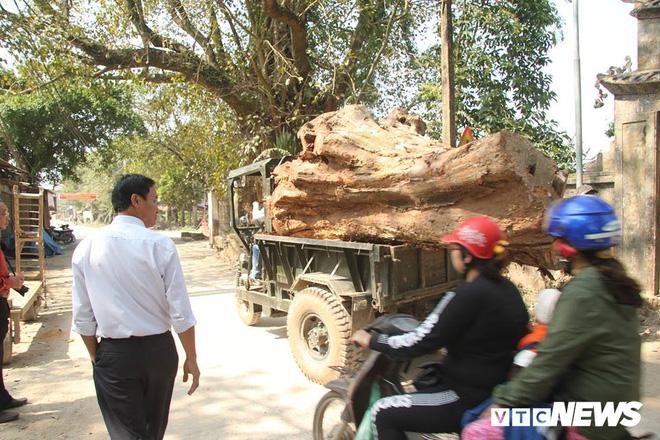 Dân làng mua thùng container 40 triệu đồng, cử 23 người bảo vệ gỗ cây sưa trăm tuổi vừa đốn hạ - Ảnh 5.