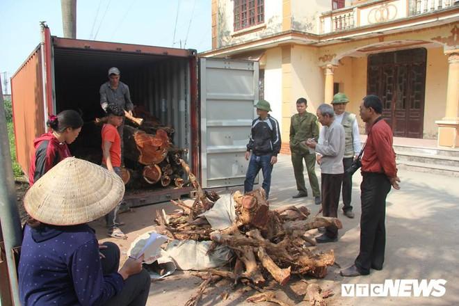 Dân làng mua thùng container 40 triệu đồng, cử 23 người bảo vệ gỗ cây sưa trăm tuổi vừa đốn hạ - Ảnh 6.