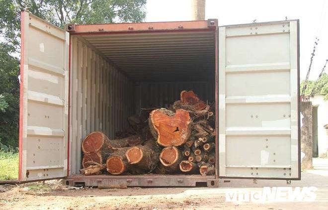 Dân làng mua thùng container 40 triệu đồng, cử 23 người bảo vệ gỗ cây sưa trăm tuổi vừa đốn hạ - Ảnh 7.