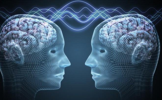Không phải 2, khoa học đã kết nối được 3 bộ não với nhau: Điều kỳ diệu gì đang xảy ra?
