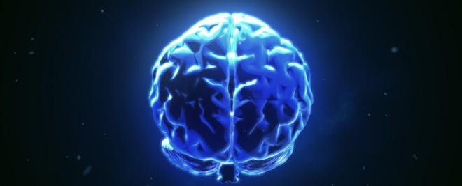 Không phải 2, khoa học đã kết nối được 3 bộ não với nhau: Điều kỳ diệu gì đang xảy ra? - Ảnh 2.