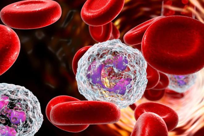 Chuyên gia ung bướu: Có những khối ung thư đẻ ra con, cháu rồi tự biến mất - Ảnh 1.