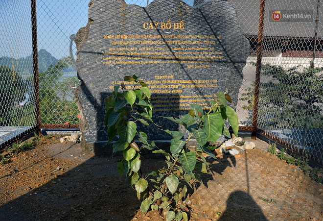 Cận cảnh ngôi chùa lớn nhất Việt Nam - Nơi sẽ đặt báu vật thiên thạch mặt trăng 600.000 USD được đấu giá từ Mỹ - Ảnh 19.
