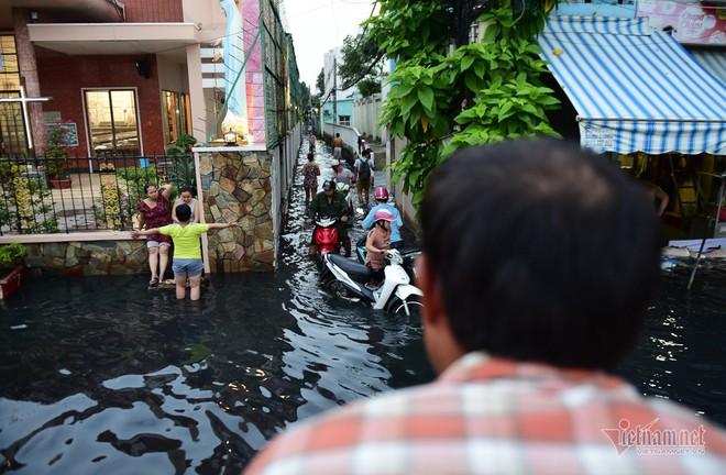 Hàng trăm người Sài Gòn oằn lưng gia cố bờ bao vỡ do triều cường - Ảnh 13.