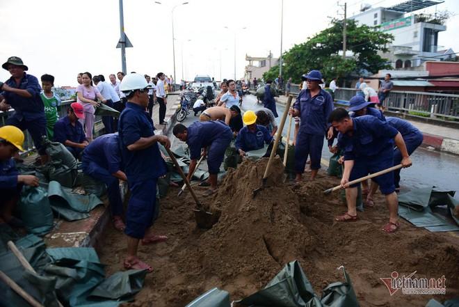 Hàng trăm người Sài Gòn oằn lưng gia cố bờ bao vỡ do triều cường - Ảnh 3.