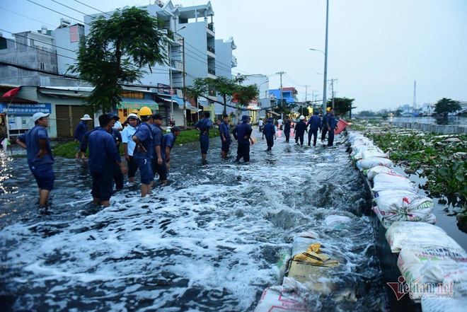 Hàng trăm người Sài Gòn oằn lưng gia cố bờ bao vỡ do triều cường - Ảnh 5.