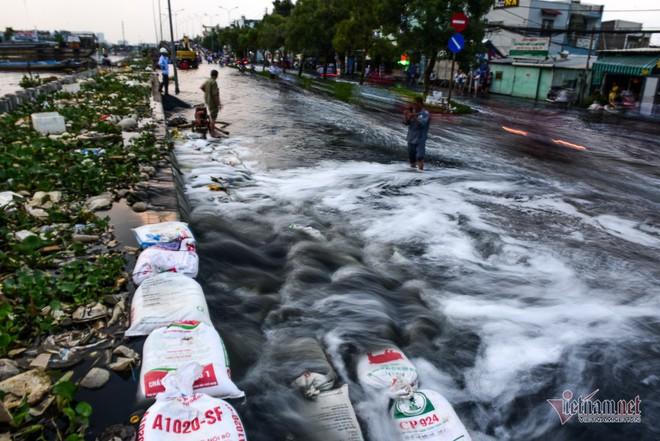 Hàng trăm người Sài Gòn oằn lưng gia cố bờ bao vỡ do triều cường - Ảnh 6.