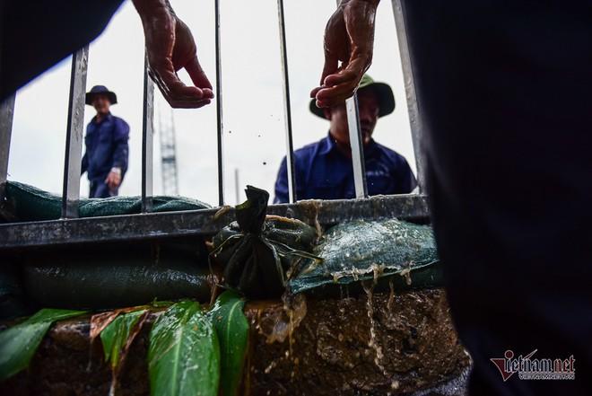 Hàng trăm người Sài Gòn oằn lưng gia cố bờ bao vỡ do triều cường - Ảnh 7.
