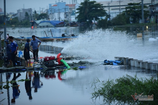 Hàng trăm người Sài Gòn oằn lưng gia cố bờ bao vỡ do triều cường - Ảnh 9.
