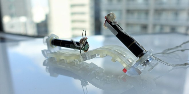 Các nhà khoa học vừa chế tạo thành công loại robot thân mềm có thể trườn như sâu - Ảnh 2.