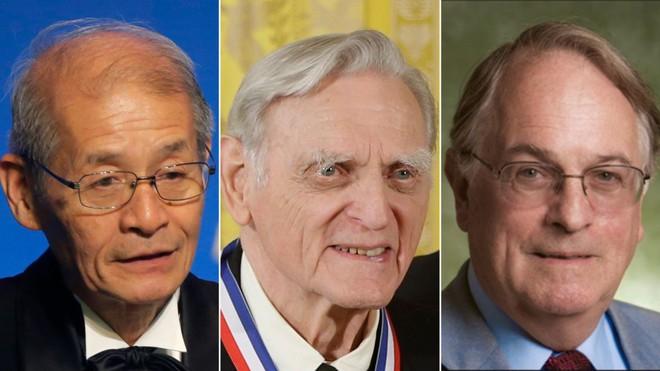 Giải Nobel Hóa học 2019 thuộc về 3 nhà khoa học đi tiên phong trong công nghệ pin Lithium-Ion - Ảnh 1.