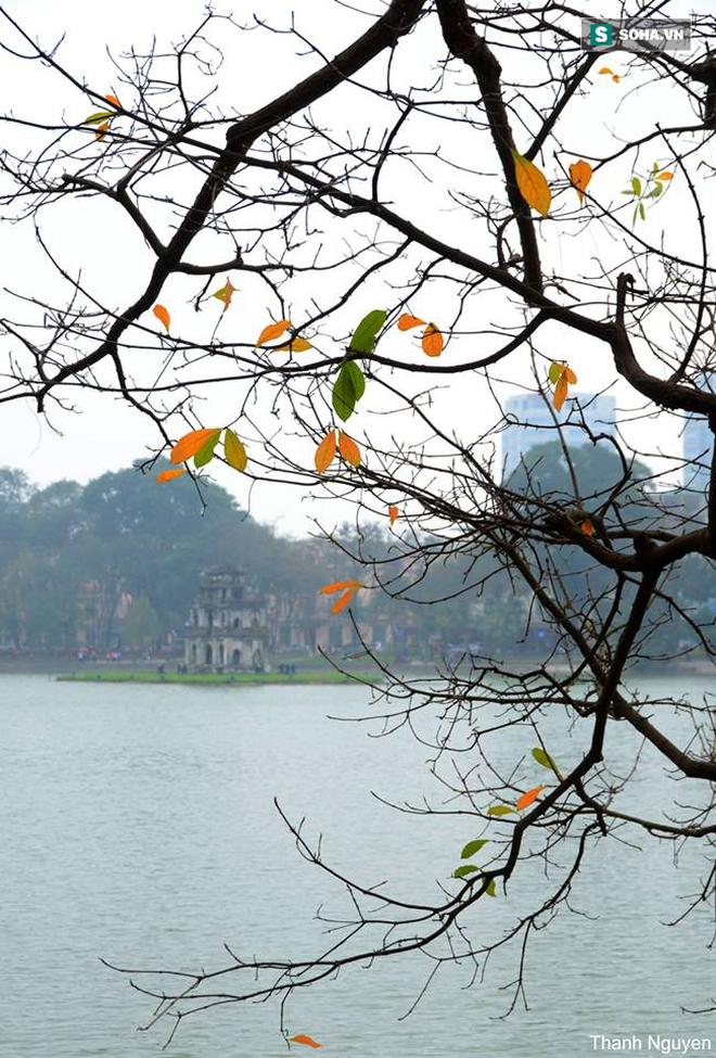 Gió mùa Đông Bắc tràn về, Hà Nội sẽ giảm 10 độ; Từ nay đến cuối năm có mấy cơn bão? - ảnh 2