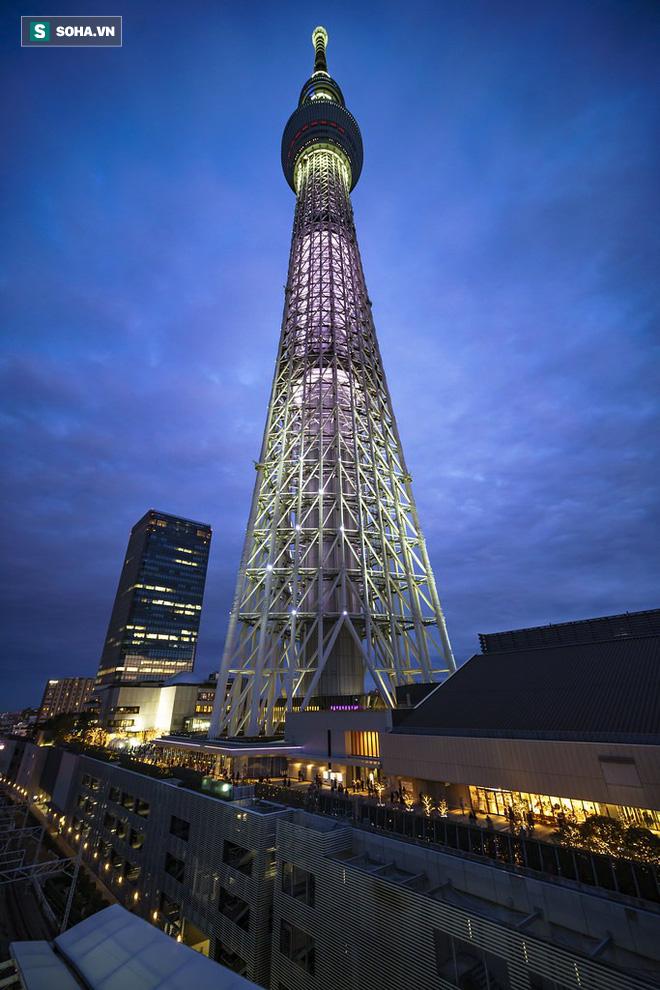 Gió bão hủy diệt giáng xuống Tokyo vẫn không thể quật ngã công trình cao nhất Nhật Bản này! - ảnh 1