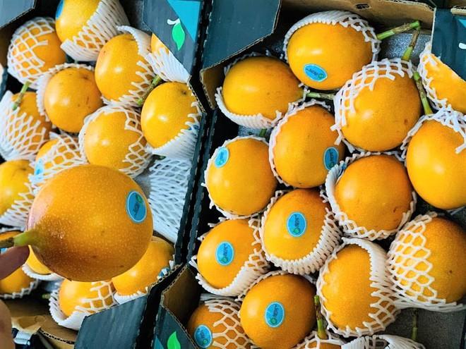 Sính ngoại, nhà giàu đổ xô mua chanh leo vàng giá 800.000 đồng/kg - Ảnh 2.
