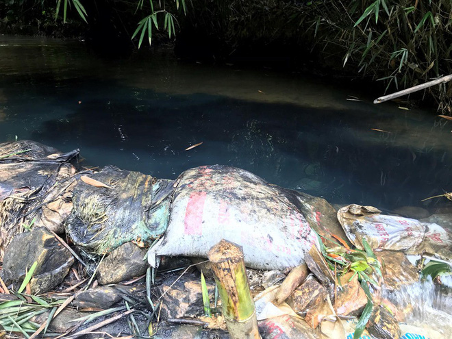 Bộ TN-MT: Ô nhiễm nguồn nhà máy nước sạch sông Đà do xe tải đổ trộm dầu thải - Ảnh 3.
