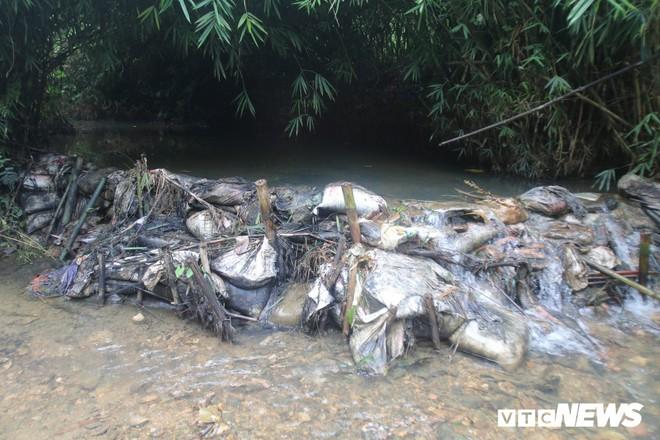 Ảnh: Cận cảnh con suối đen sì gần nhà máy nước sạch sông Đà bị đầu độc bởi dầu thải - Ảnh 2.