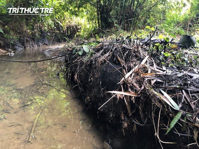 Dòng suối đầu nguồn nhà máy nước sông Đà: Dầu thải đặc quánh, đổ qua phễu to cũng không chảy được - ảnh 7
