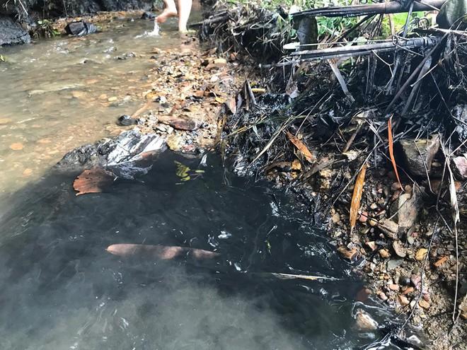 Tổng Giám đốc nước sạch sông Đà nói trong buổi họp báo vụ nước nhiễm dầu thải: Vâng, xin lỗi! - Ảnh 6.
