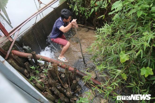 Ảnh: Cận cảnh con suối đen sì gần nhà máy nước sạch sông Đà bị đầu độc bởi dầu thải - Ảnh 3.