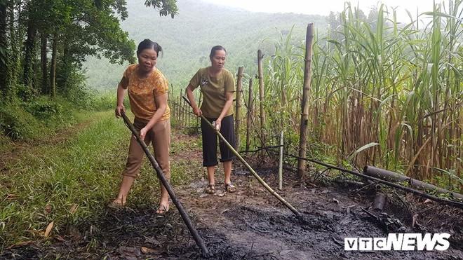 Ảnh: Cận cảnh con suối đen sì gần nhà máy nước sạch sông Đà bị đầu độc bởi dầu thải - Ảnh 5.