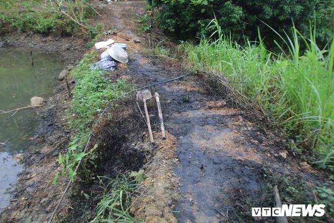 Ảnh: Cận cảnh con suối đen sì gần nhà máy nước sạch sông Đà bị đầu độc bởi dầu thải - Ảnh 7.