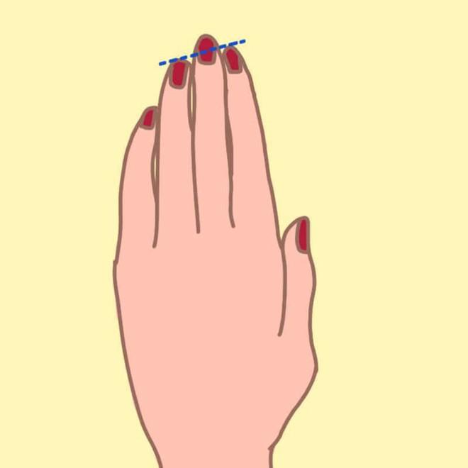 Nếu độ dài ngón đeo nhẫn ở dạng B thì chắc chắn bạn có khả năng lãnh đạo - Ảnh 3.