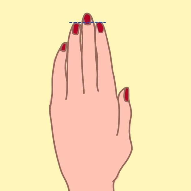 Nếu độ dài ngón đeo nhẫn ở dạng B thì chắc chắn bạn có khả năng lãnh đạo - Ảnh 4.