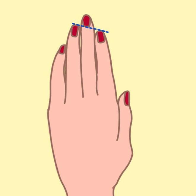 Nếu độ dài ngón đeo nhẫn ở dạng B thì chắc chắn bạn có khả năng lãnh đạo - Ảnh 2.
