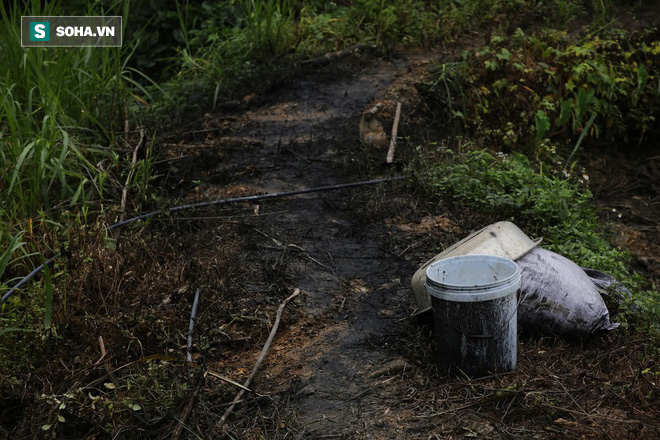 Nhân chứng kể việc phát hiện dầu thải đổ trộm xuống suối đầu nguồn nhà máy nước sông Đà - Ảnh 5.