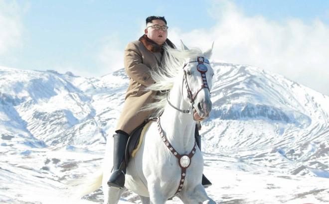 Ngựa thần ông Kim cưỡi trên đỉnh Paektu: Thần tiên mới cưỡi nổi ...