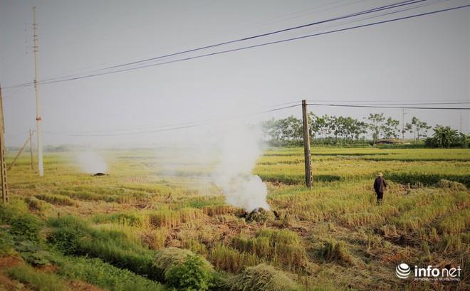 Sát thủ không khí lại xuất hiện, khói rơm rạ bắt đầu bủa vây Hà Nội - Ảnh 1.