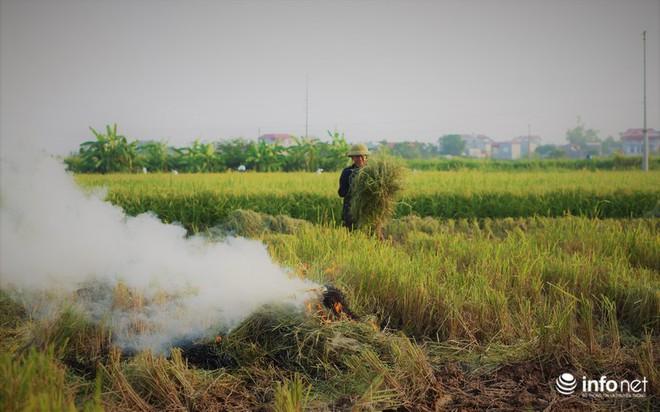 Sát thủ không khí lại xuất hiện, khói rơm rạ bắt đầu bủa vây Hà Nội - Ảnh 2.