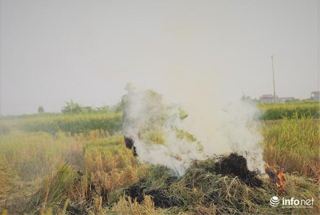 Sát thủ không khí lại xuất hiện, khói rơm rạ bắt đầu bủa vây Hà Nội - Ảnh 3.