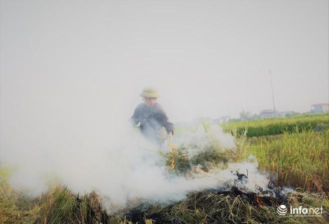 Sát thủ không khí lại xuất hiện, khói rơm rạ bắt đầu bủa vây Hà Nội - Ảnh 4.