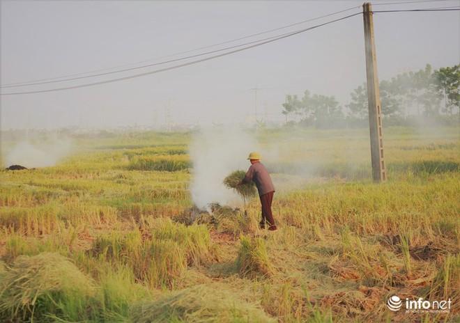 Sát thủ không khí lại xuất hiện, khói rơm rạ bắt đầu bủa vây Hà Nội - Ảnh 7.