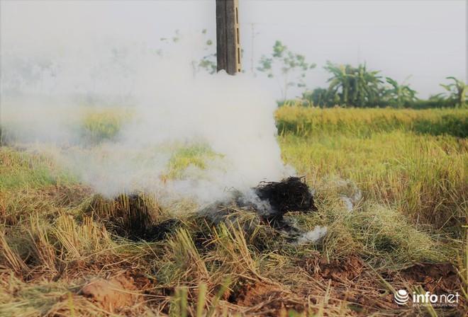 Sát thủ không khí lại xuất hiện, khói rơm rạ bắt đầu bủa vây Hà Nội - Ảnh 8.