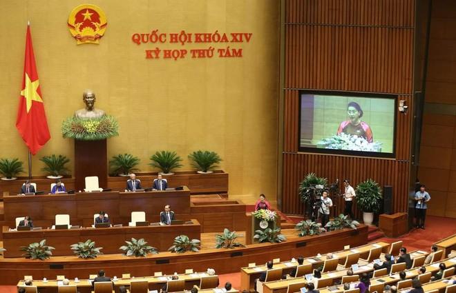 Đoàn đại biểu viếng Lăng Chủ tịch Hồ Chí Minh trước giờ khai mạc kỳ họp Quốc hội - Ảnh 10.
