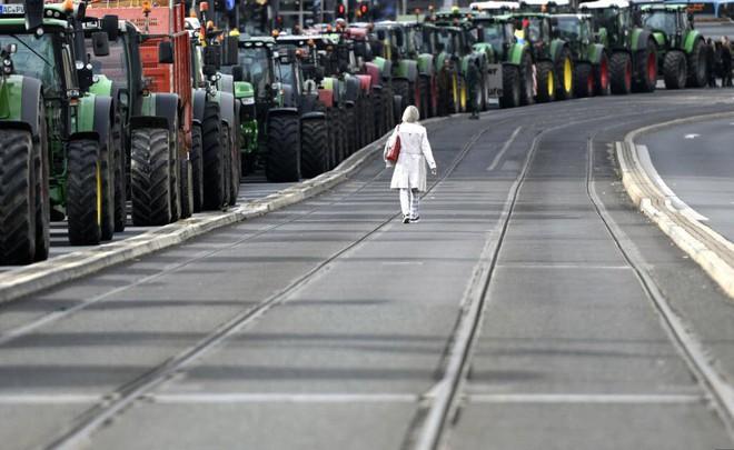 24h qua ảnh: Nông dân phơi lông gà trên đường ở Hà Nội - ảnh 10