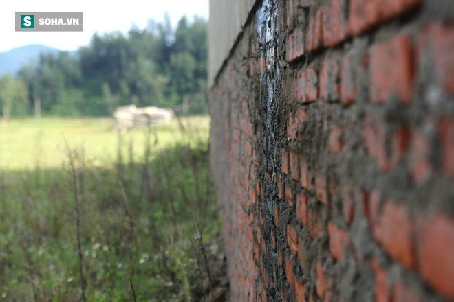 Hà Tĩnh: Quảng trường hàng chục tỷ đồng hoang tàn, thành khu chăn bò cho trẻ nhỏ - Ảnh 11.