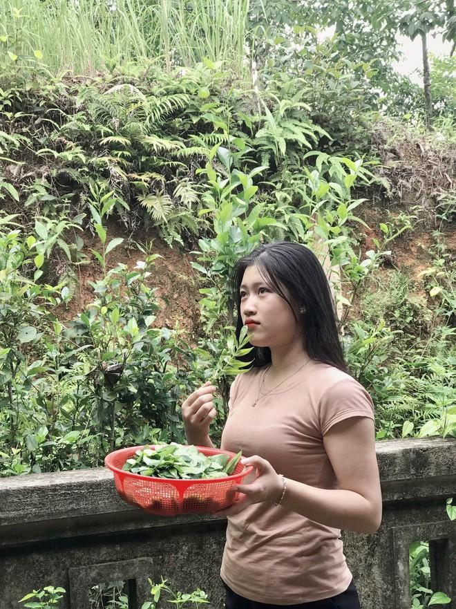 Chỉ ra vườn hái rau nấu canh, cô gái không ngờ mình bỗng nổi tiếng khắp mạng xã hội - Ảnh 4.