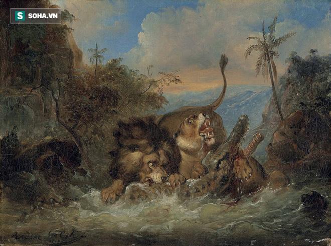 Trận chiến của những vị vua: Sư tử tái mặt khi bóng đen lao đến dìm nó xuống nước - Ảnh 1.