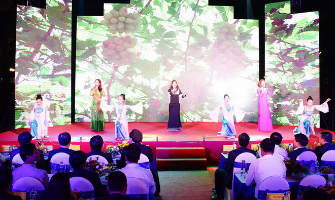 Khai mạc Ngày Văn hóa, Du lịch Ninh Thuận tại Hà Nội - Ảnh 2.