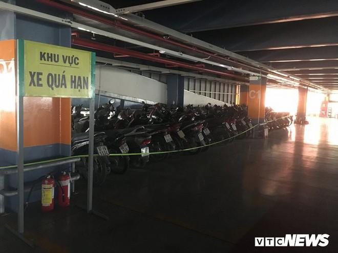 Ảnh: Hàng trăm xe máy bị bỏ rơi, thành cục nợ ở sân bay Tân Sơn Nhất - Ảnh 1.