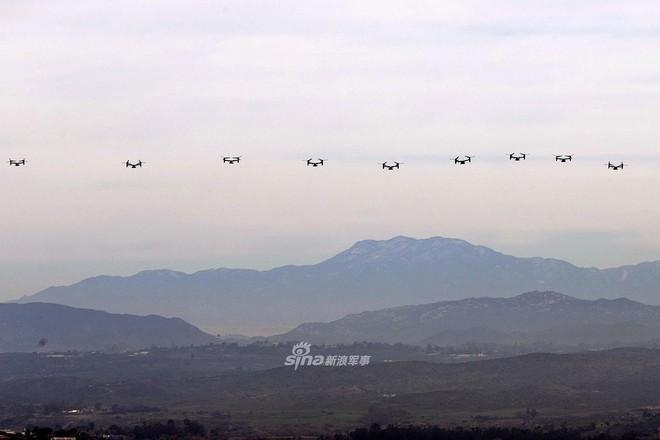 Trực thăng siêu 'dị' V-22 Mỹ có mặt trong chiến dịch tiêu diệt trùm khủng bố IS? - ảnh 13