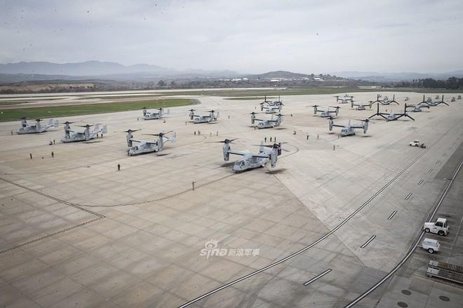 Trực thăng siêu 'dị' V-22 Mỹ có mặt trong chiến dịch tiêu diệt trùm khủng bố IS? - ảnh 9