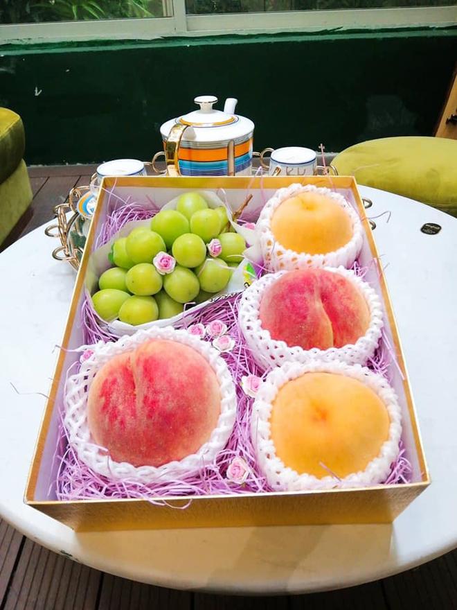 Đào tiên Nhật Bản có giá gần 1 triệu/cặp hút giới nhà giàu Việt - Ảnh 3.