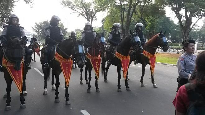 Việt Nam có thể thành lập lực lượng cảnh sát cơ động kỵ binh: Kinh nghiệm và xu hướng quốc tế - Ảnh 3.